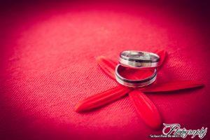Hochzeit_Koltes_Ringe_www-10