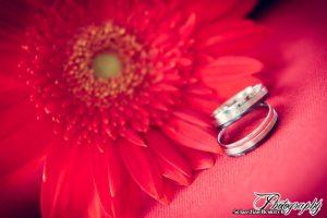 Hochzeit_Koltes_Ringe_www-7
